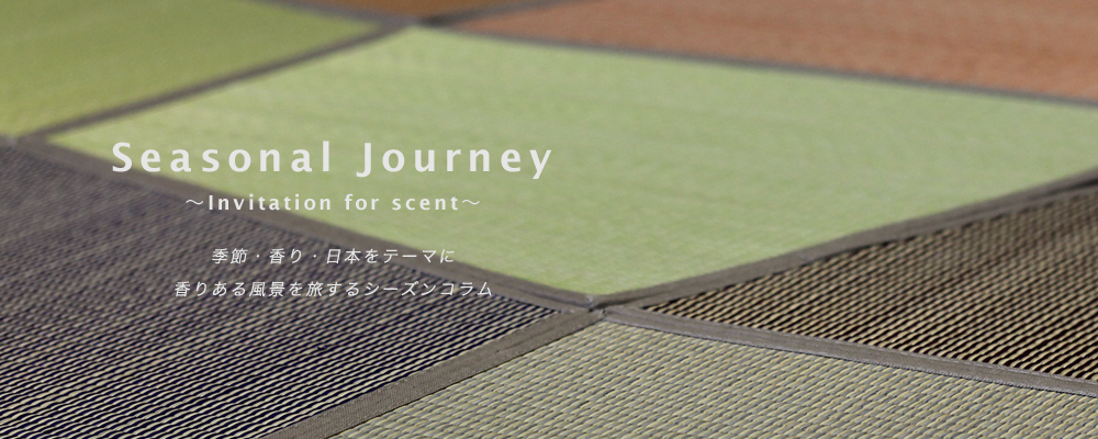seasonal_journey