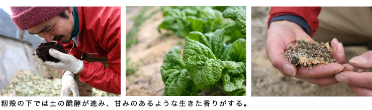 journey_3_740×200.jpg